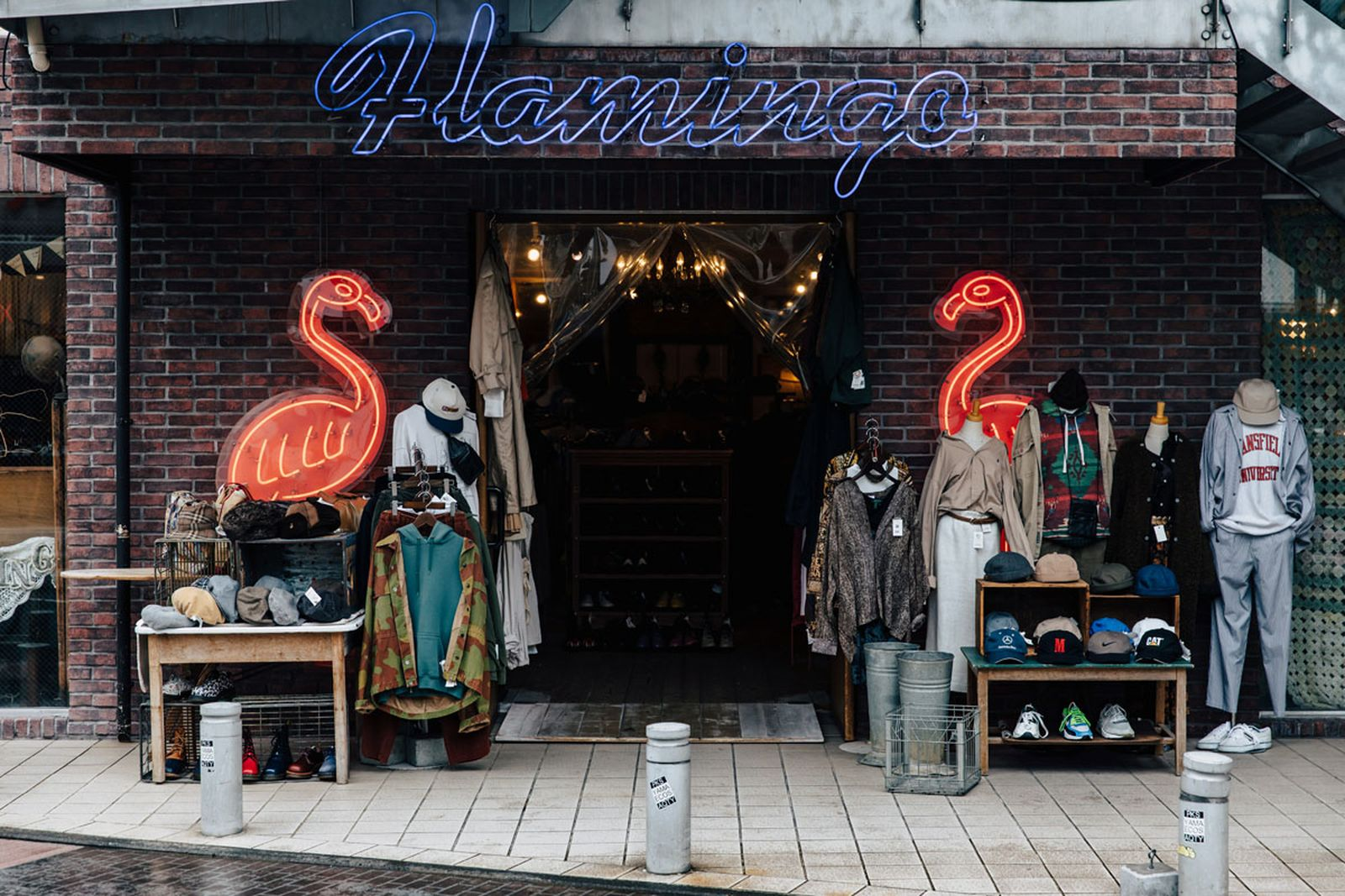 tokyo city guide flamingo prov the real mccoys have a good time
