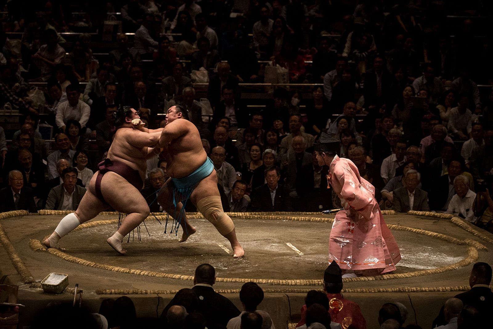 sumo wrestling guide main