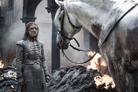 game of thrones arya white horse theory