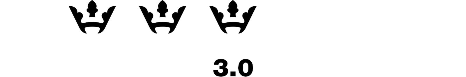3.0 Stay Dangerous YG