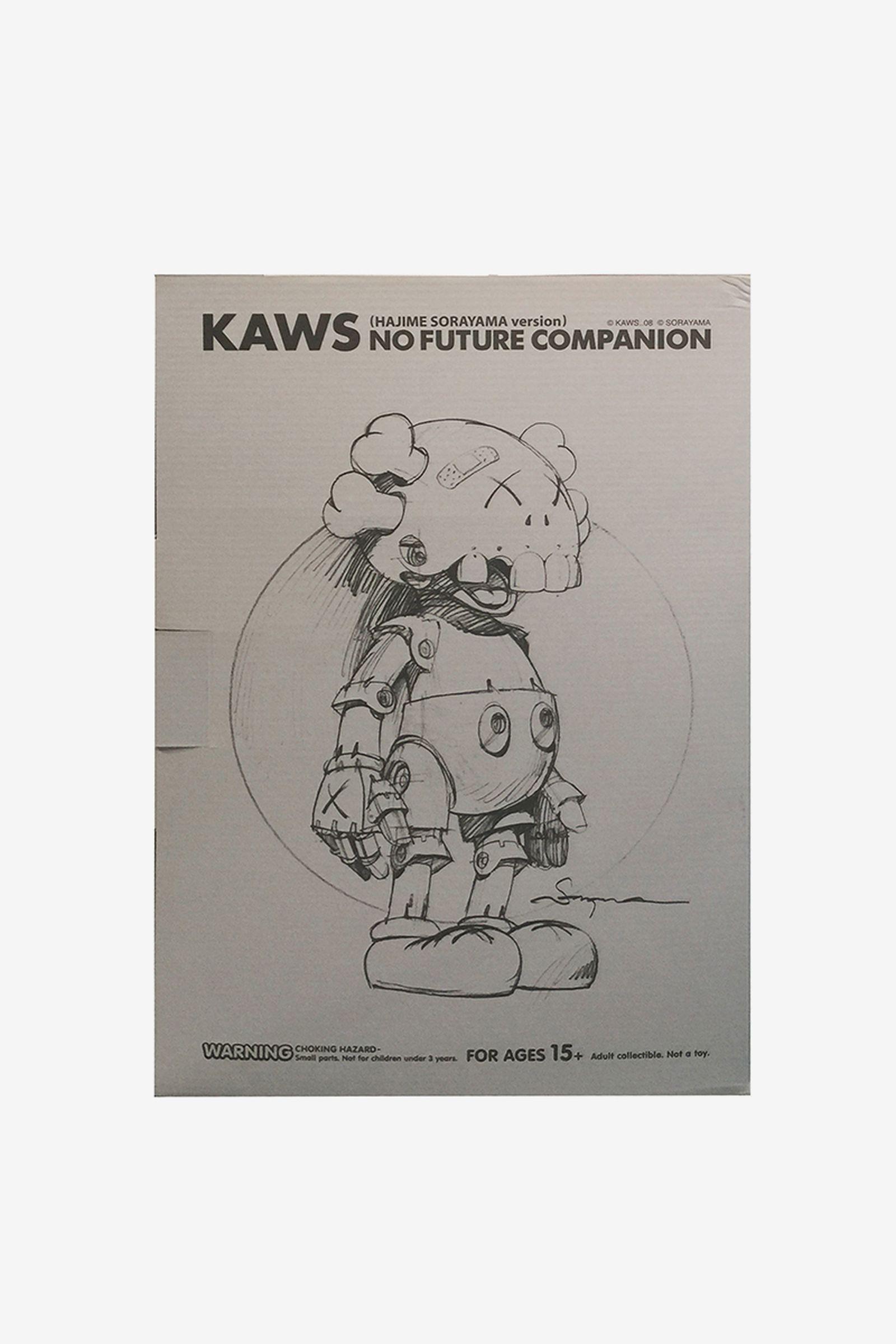 kaws silver 000 Richard Hambleton invader paddle8
