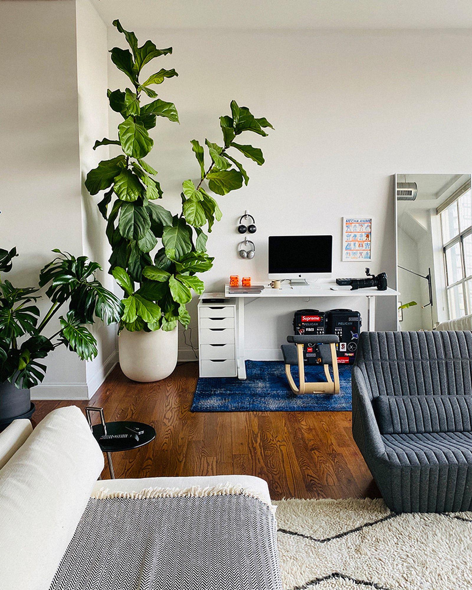 wfh-office-tour-look-inside-home-offices-tyler-joe-01