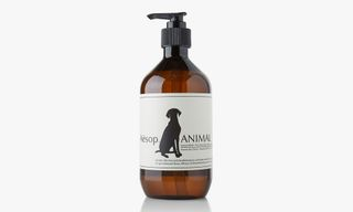 10 Holiday Gifts For Your Pampered Pet
