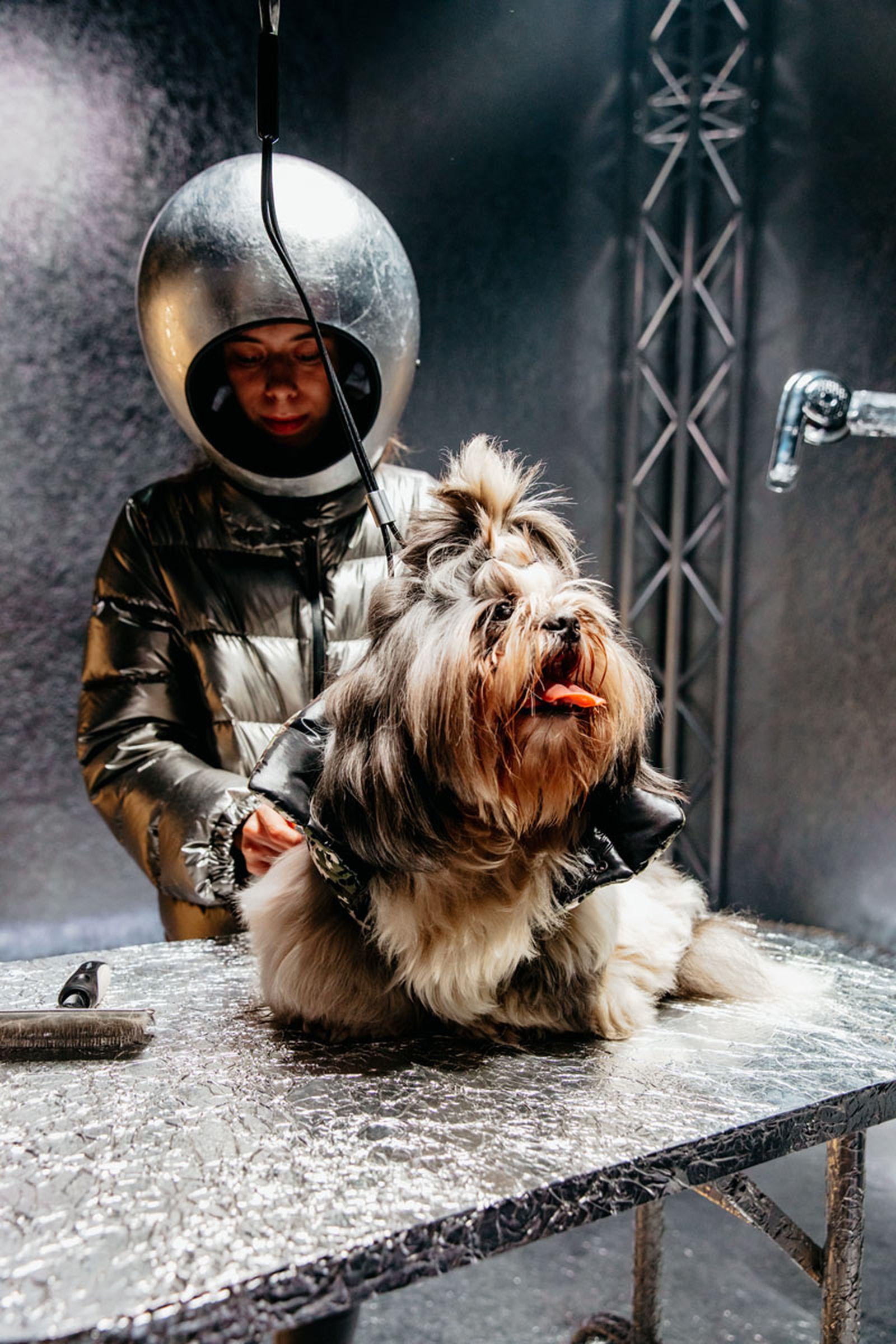 moncler-genius-fall-2020-hiroshi-dog-courture-03