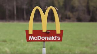 tiny mcdonalds mcdonald's