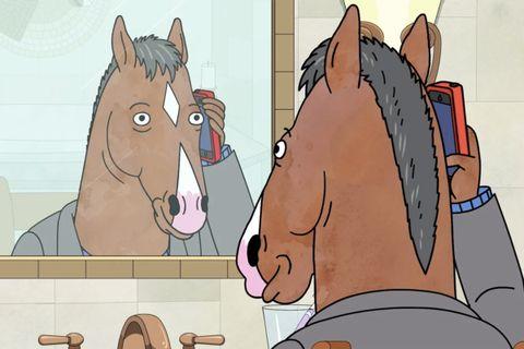 Bojack Horseman Season 6, looking in mirror on phone