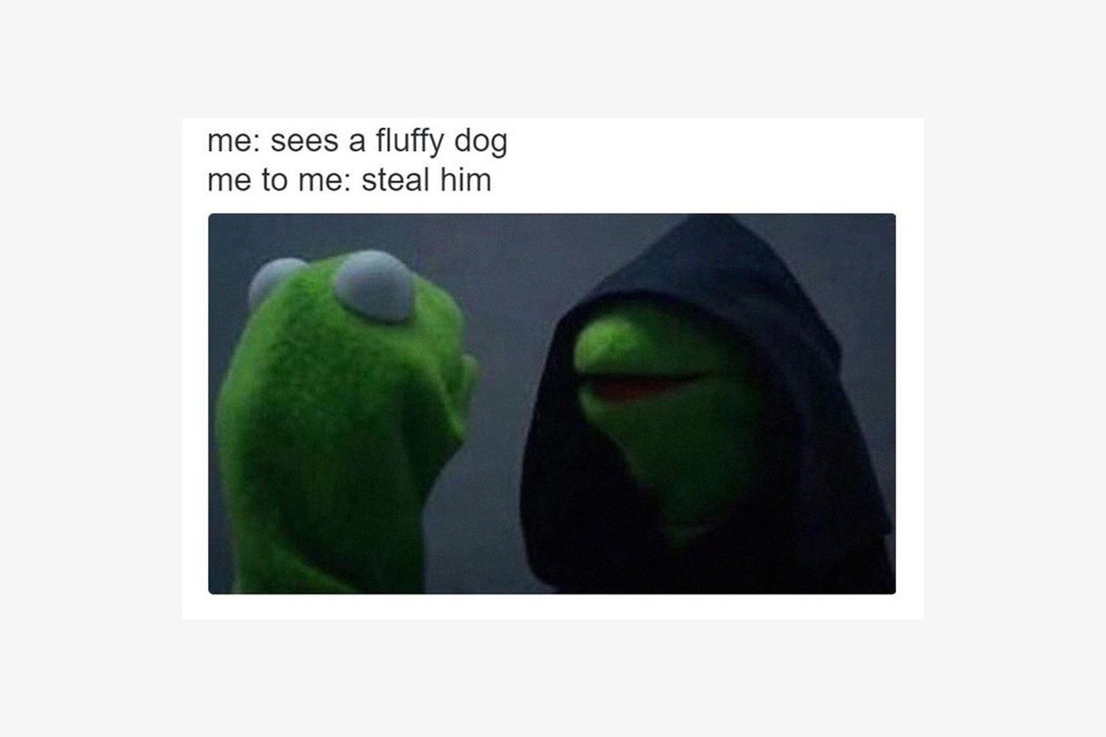 best-memes-of-2016-Evil-Kermit