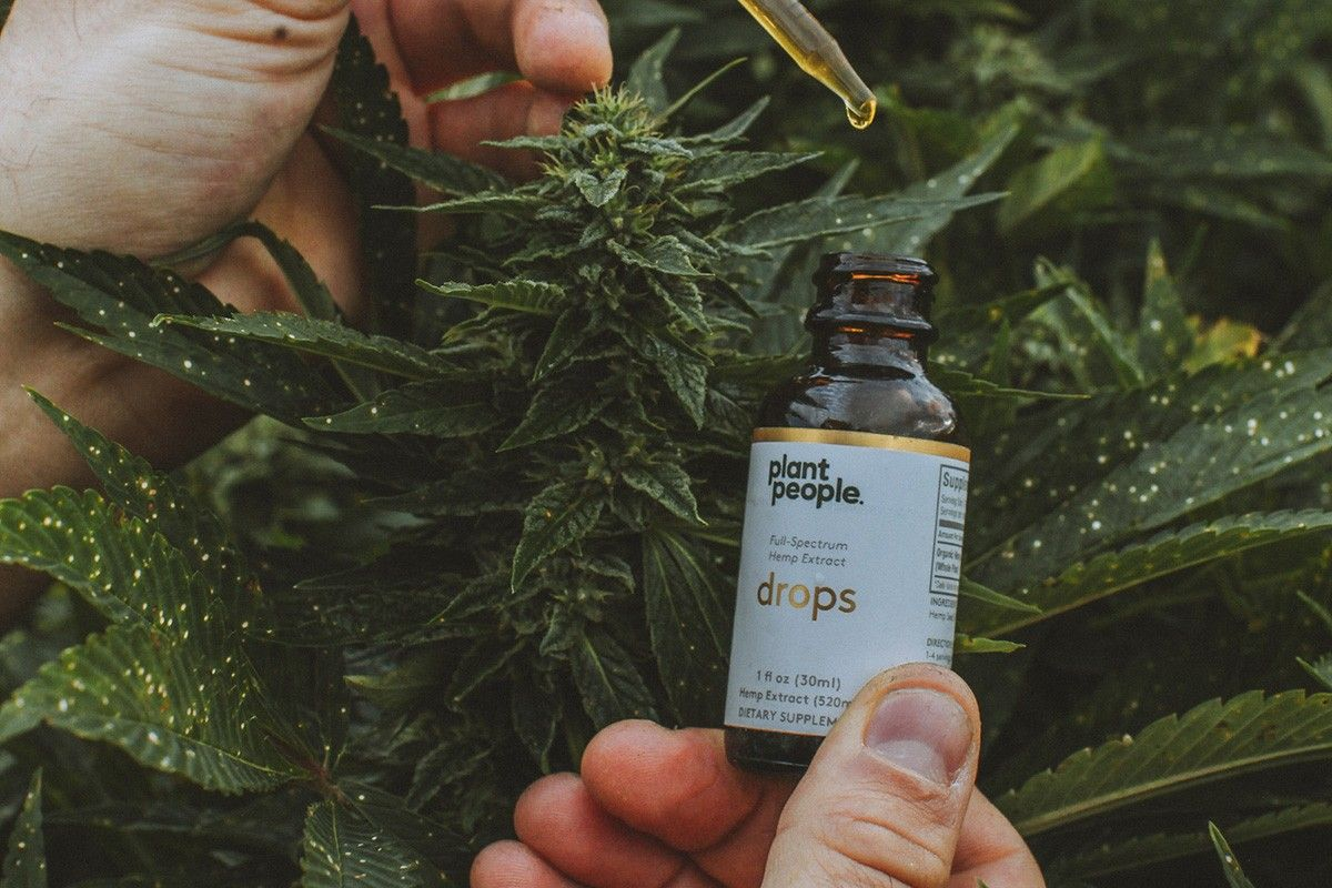 What is CBD? Uses, Benefits & Risks - A Complete Guide to CBD