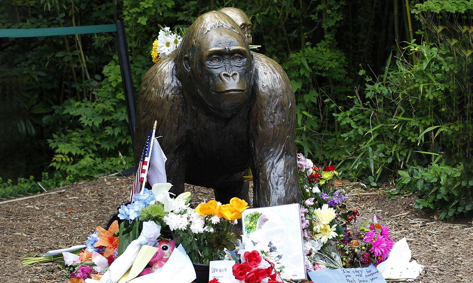 Flowers lay around a bronze statue of a gorilla