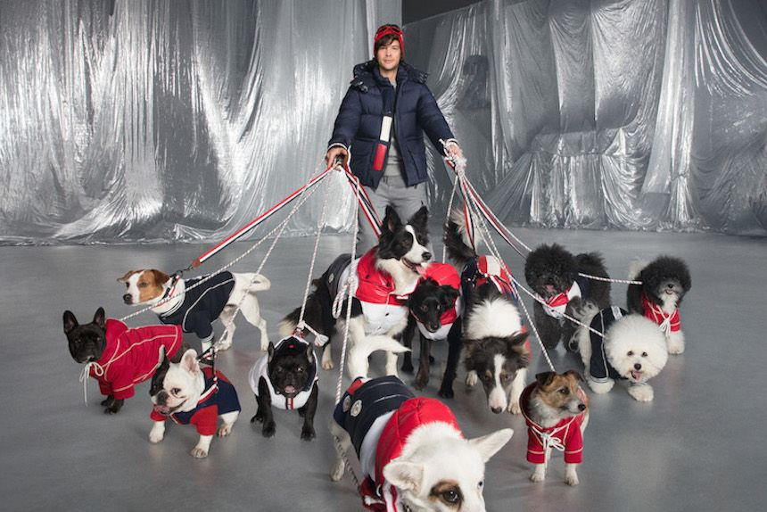 Moncler's Shiny Puffer Jackets for Dogs: Shop them Here