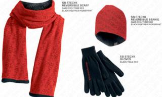 Nike SB x C.R. Stecyk III | November 2008 Accessories