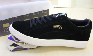 Giant Puma Clyde