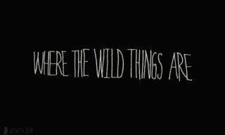 Geoff McFetridge For Where The Wild Things Are