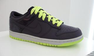 """Nike Fall 2009 Dunk Lo """"Neon"""""""