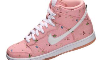 Nike Sportswear x Paul Marrot Dunk Hi Skinny Supreme