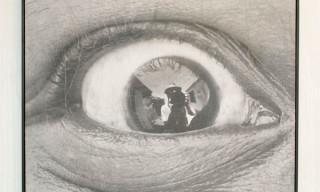 Self-Portraits By Contemporary Urban Artists Recap