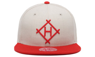 Hall Of Fame x Mitchell & Ness Baseball Diamond Fitted Cap