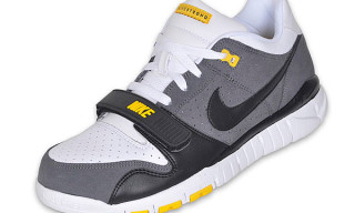 Nike Trainer Dunk Low Livestrong