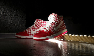 Nike Sportswear Fall 2009 Dunk Hi Skinny Checker