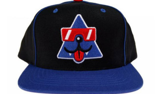 Cool Cats x Starter Cap Released