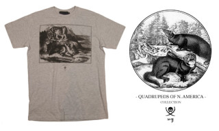 Maiden Noir Fall 2009 Quadrupeds of N. America   John Audubon T-Shirts