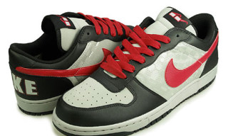 "Nike Big Nike Low ""Spike Lee"""