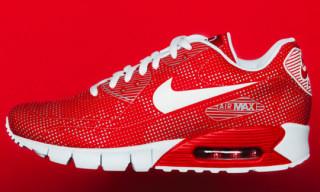 Nike Air Max 90 Moire Fall 2010