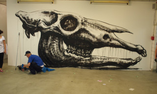 Bright Summer 2010 – ROA Installation