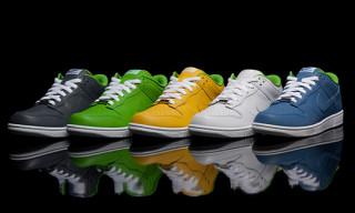 Nike x SneakersBR Dunk Pack