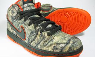 Nike SB Dunk Mid Realtree Camo
