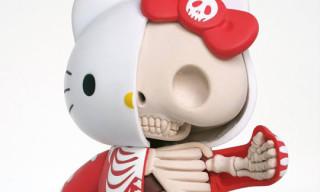 Hello Kitty Anatomy Sculpture by Jason Freeny