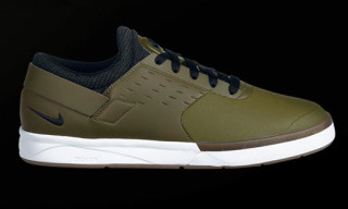 Nike SB Zoom FB February 2011 Preview