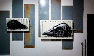 ROA Exhibition at Puppy Gallery Los Angeles – Recap