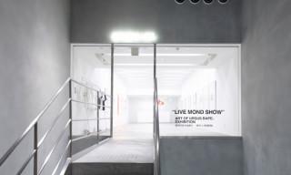 Live Mond Show – The Art Of URSUS Bape Exhibition Recap