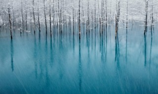 National Geographic Photo Contest 2011 Winners