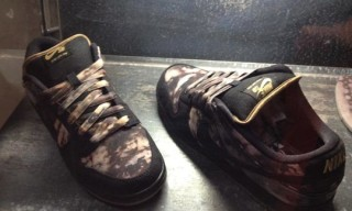 Pushead x Nike SB 'Bleached' Dunk Low Fall 2012