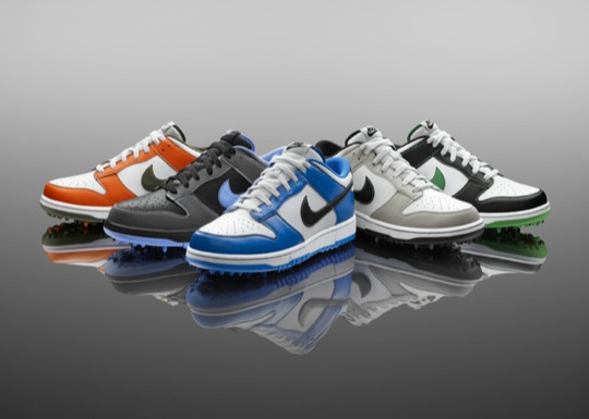 Nike Dunk Ng Golf Shoes