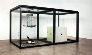 Preview: Damien Hirst Retrospective at Tate Modern