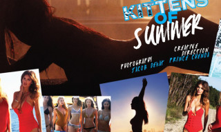 Lovecat Mag: Kittens of Summer 2012