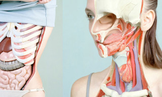 Anatomy – Incredible Anatomical Portraits by Koen Hauser