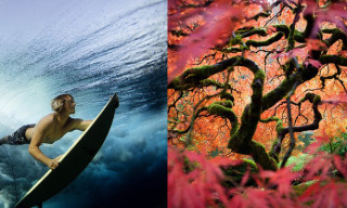 National Geographic Photo Contest 2012 Winners