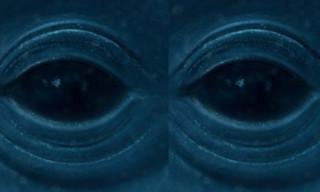 Music: Frank Ocean – Blue Whale