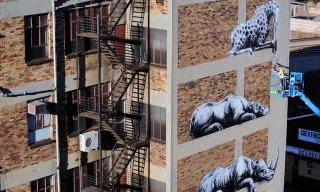 ROA Brings Wildlife to the City of Johannesburg with Recent Mural