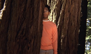 Music Video: Toro Y Moi – Say That