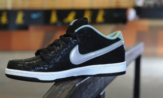 Nike x SPoT x Lance Mountain SB Dunk Low