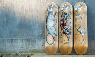 The SK8room x ROA Skateboard Deck Series