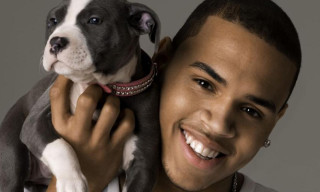 The Chris Brown Channel – 24/7 Team Breezy