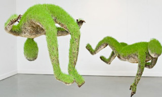 Living Sculptures of Grass