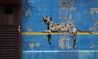 "Banksy ""Better Out Than In"" Day 30 – 'Bronx Zoo'"