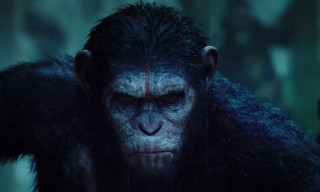 Watch the Trailer for 'Dawn of the Planet of the Apes'